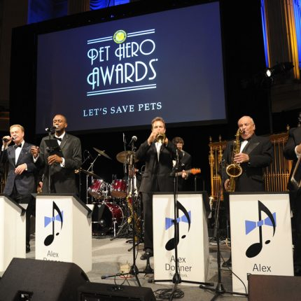 Pet Hero Awards 2016